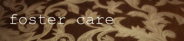 foster care banner
